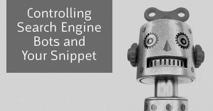 Controlling Search Engine Bots and Your Search Snippet