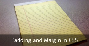 Padding and Margin in CSS: What's the Difference?